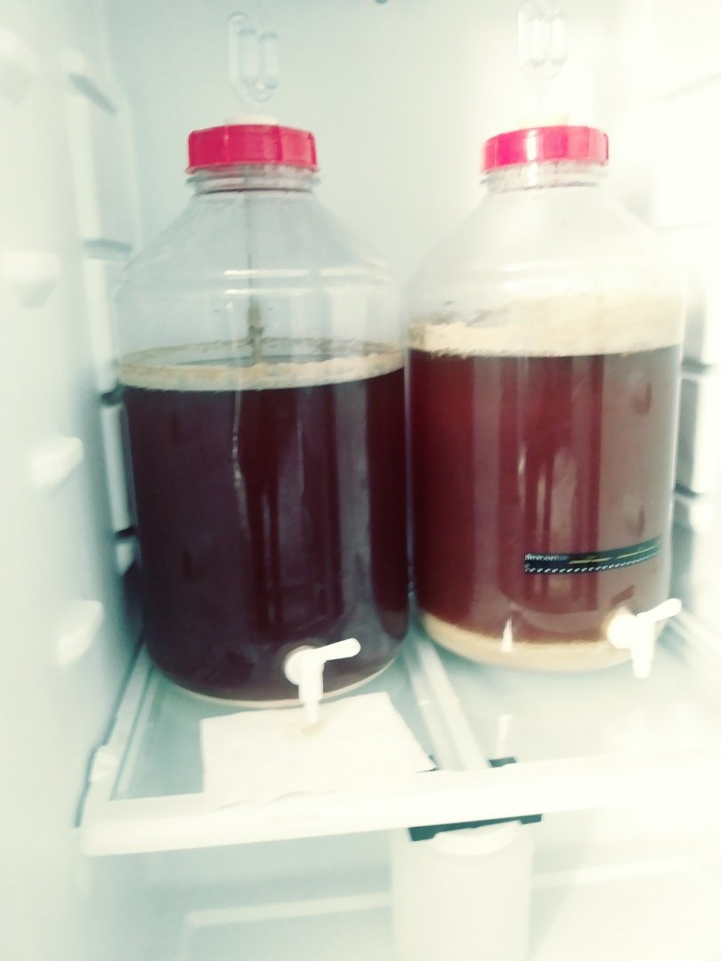 How do you Brew   Make Beer at Home Forums   Brewer's Friend