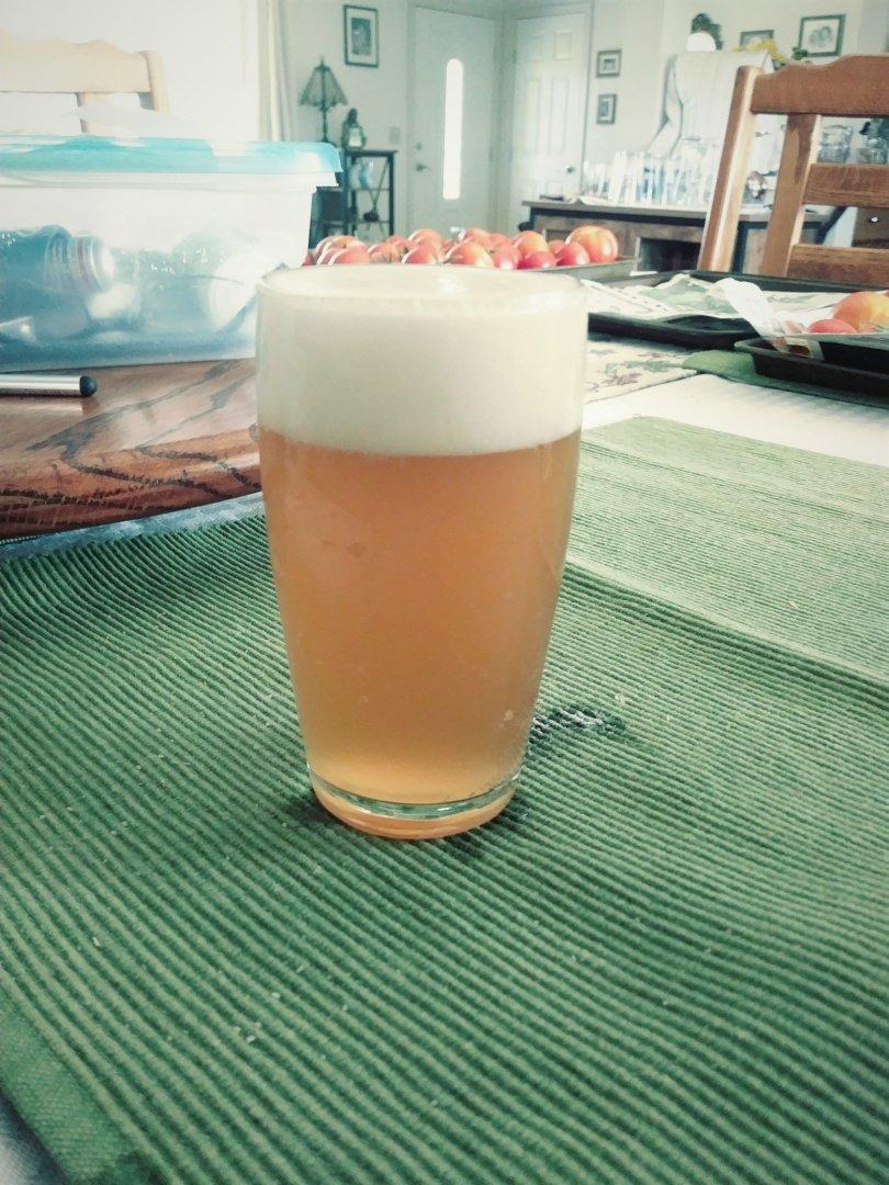 Hop Blonde Ale.jpg