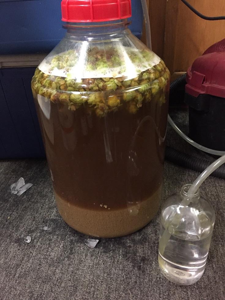 Hop fermenter.jpg