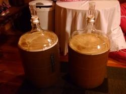 fermentation-start-2995.jpg